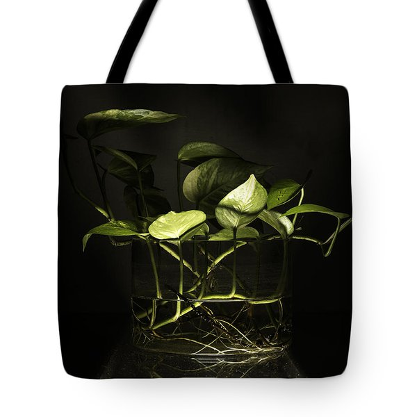 From The Bottom Tote Bag by Rajiv Chopra