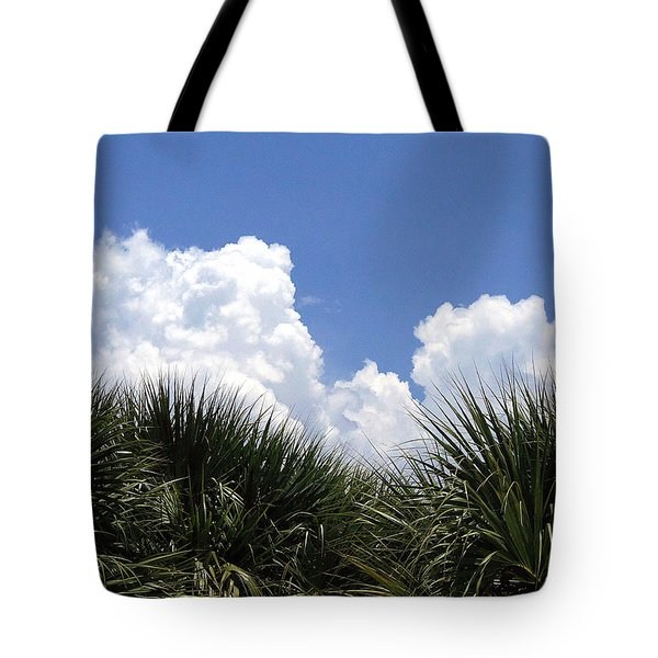 Tote Bag featuring the photograph From The Honey Moon Island Visitor Center 002 by Chris Mercer