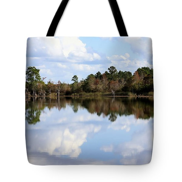 Tote Bag featuring the photograph From The Lake To The Channel  by Debra Forand