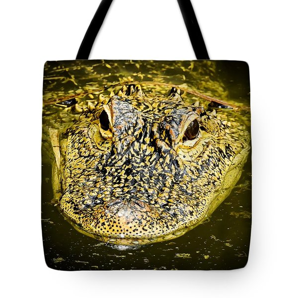 From The Series I Am Gator Number 5 Tote Bag