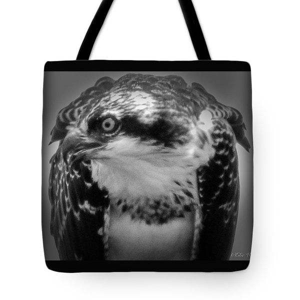 From The Series The Osprey Number Two Tote Bag