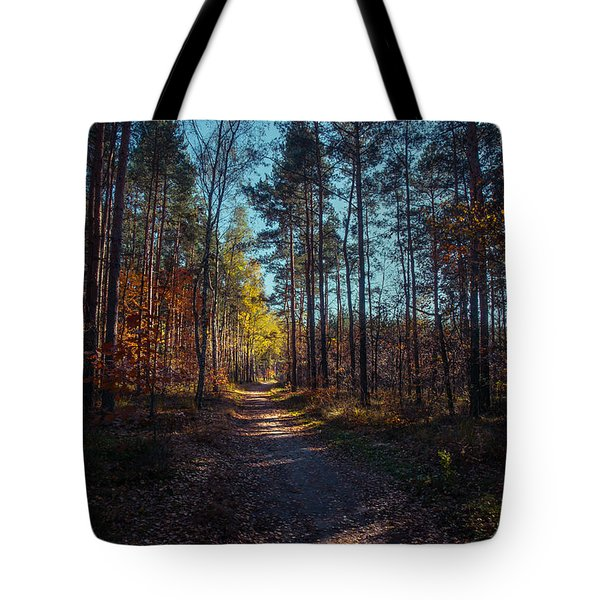 Tote Bag featuring the photograph From The Shadow To The Light by Dmytro Korol
