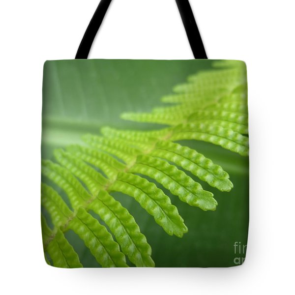 Frond And Leaf Tote Bag by Tim Good
