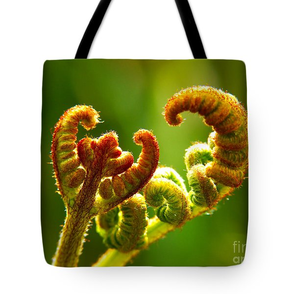 Frond Fern Tote Bag