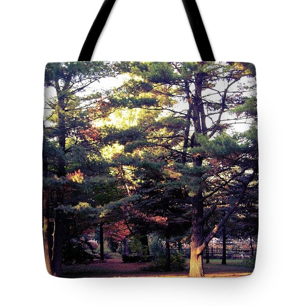 Front Row Seat Tote Bag