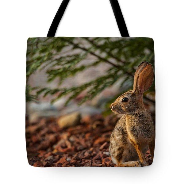 Tote Bag featuring the photograph Frontyard Bunny by Dan McManus
