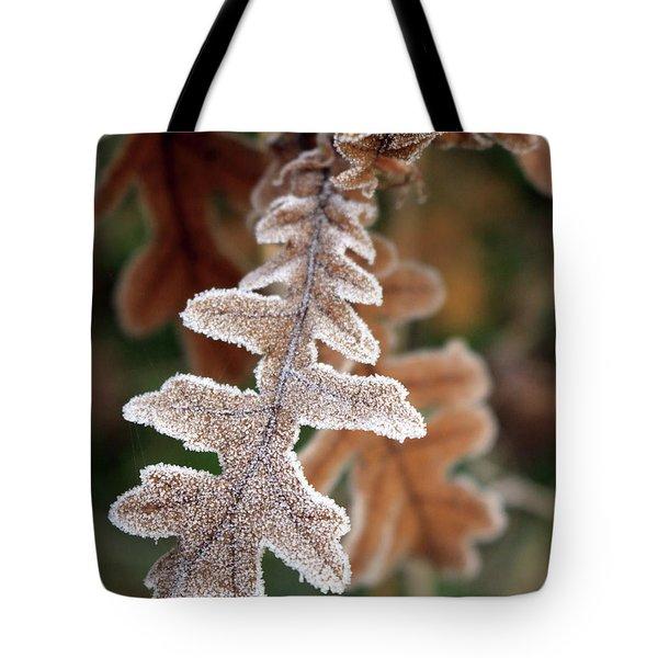 Frost Covered Oak Leaf Tote Bag