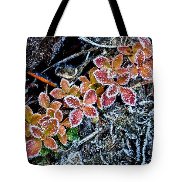 Frost Line Tote Bag
