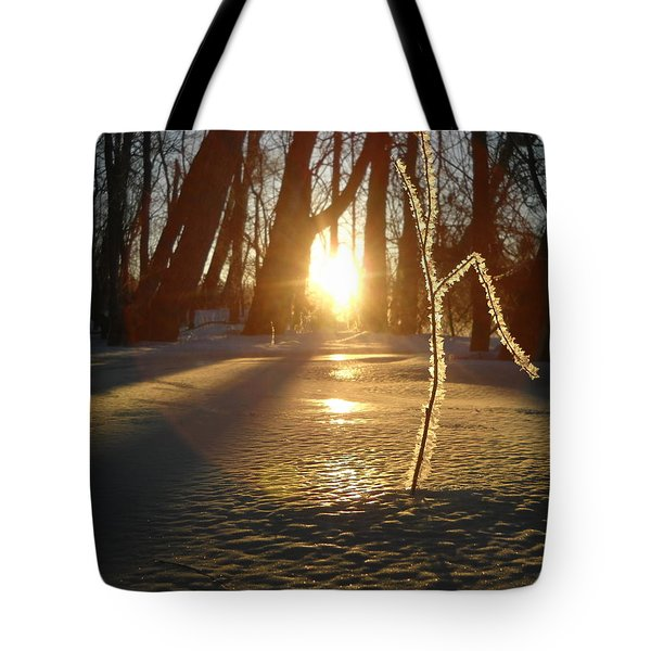 Frost On Sapling At Sunrise Tote Bag