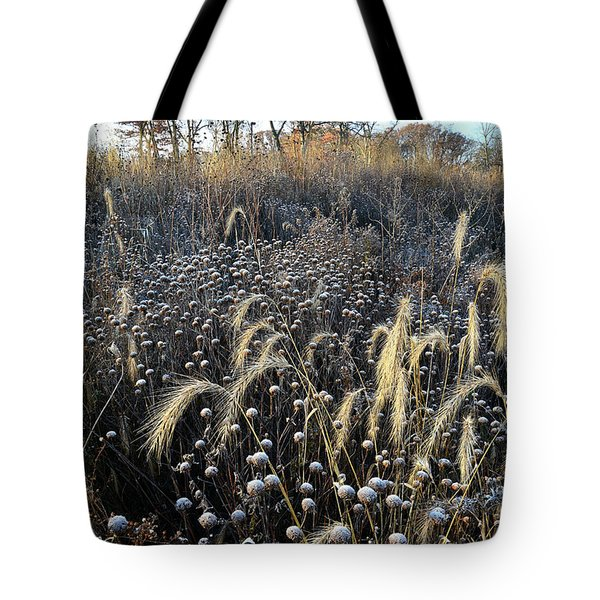 Frosted Foxtail Grasses In Glacial Park Tote Bag