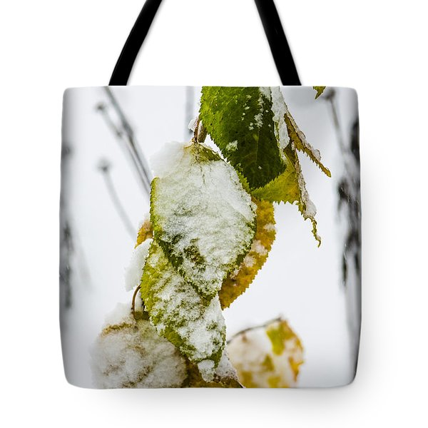 Frosted Green And Yellow Tote Bag