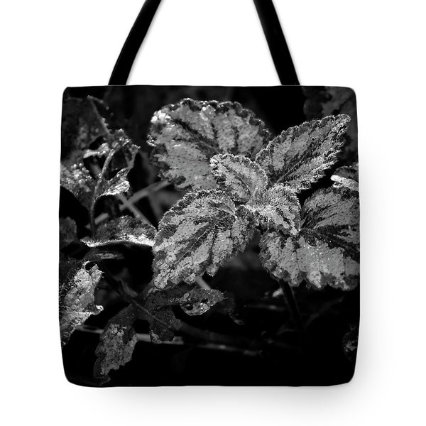 Frosted Hosta Tote Bag