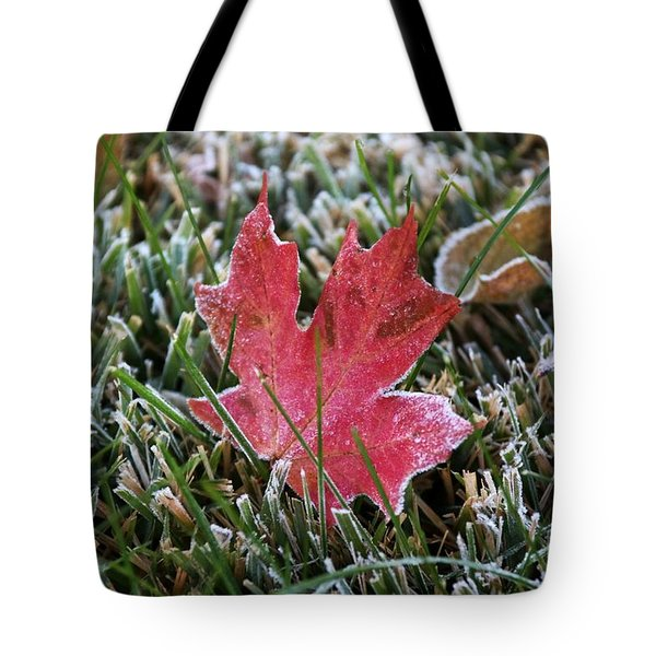 Frosted Maple Leaf  Tote Bag