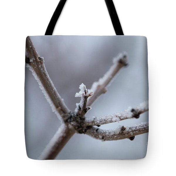 Tote Bag featuring the photograph Frosted Morning by Ana V Ramirez