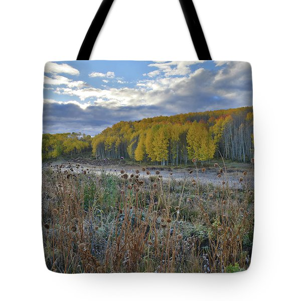 Frosted Thistle Garden On Wilson Mesa Tote Bag by Ray Mathis