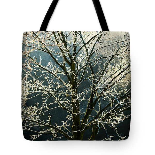 Frosted Trees Tote Bag