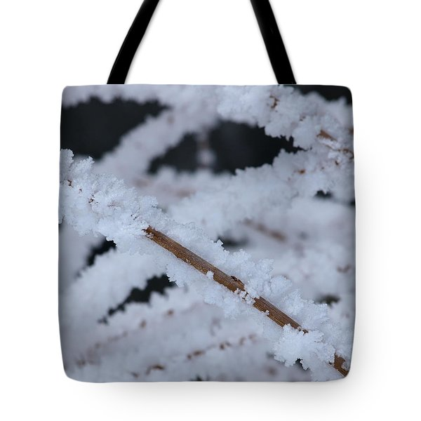 Frosted Twigs Tote Bag by DeeLon Merritt