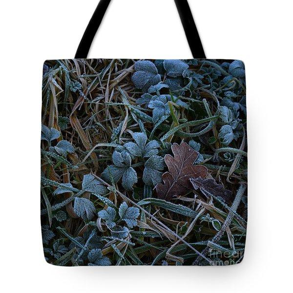 Frostings 4 Tote Bag