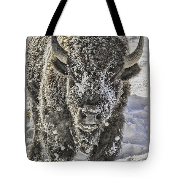 Frosty Bison Tote Bag