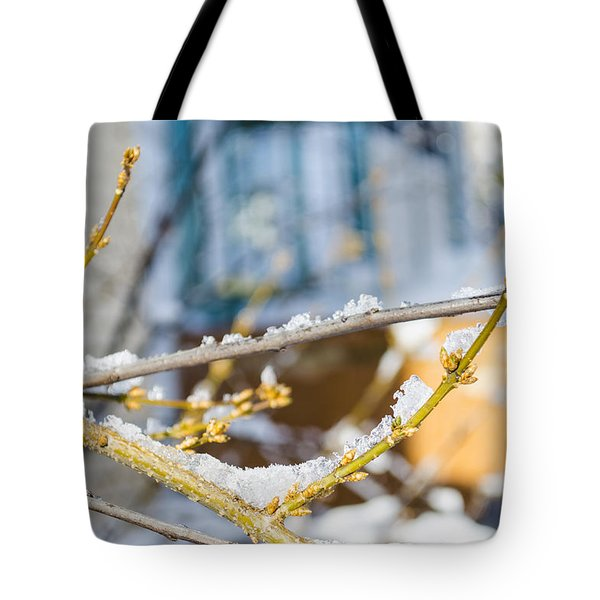 Frosty Branches Tote Bag