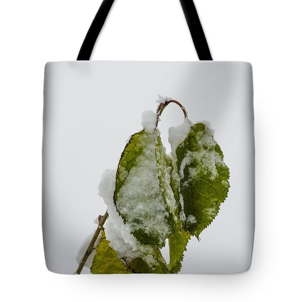 Frosty Green Leaves Tote Bag