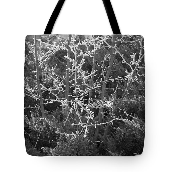 Tote Bag featuring the photograph Frosty Morning # 3 by Antonio Romero