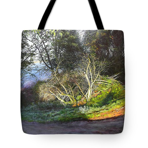 Tote Bag featuring the painting Frosty Morning Near Nant Clwyd by Harry Robertson