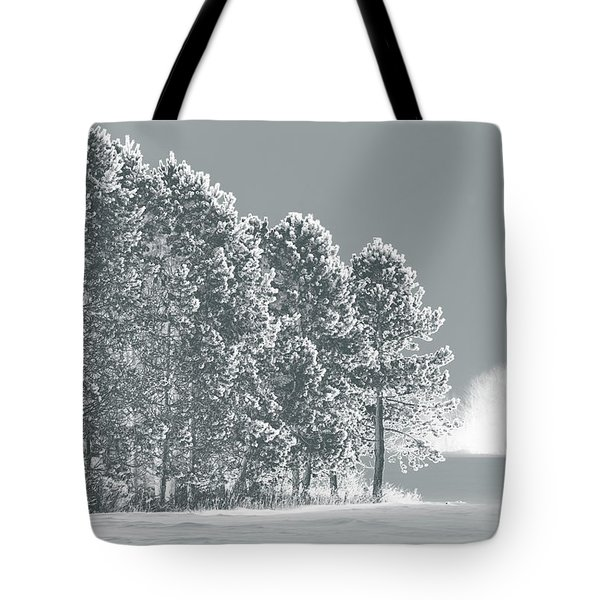 Tote Bag featuring the photograph Frosty Morning by WB Johnston