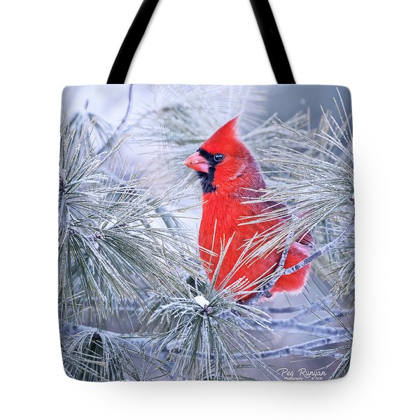 Frosty Seat Tote Bag