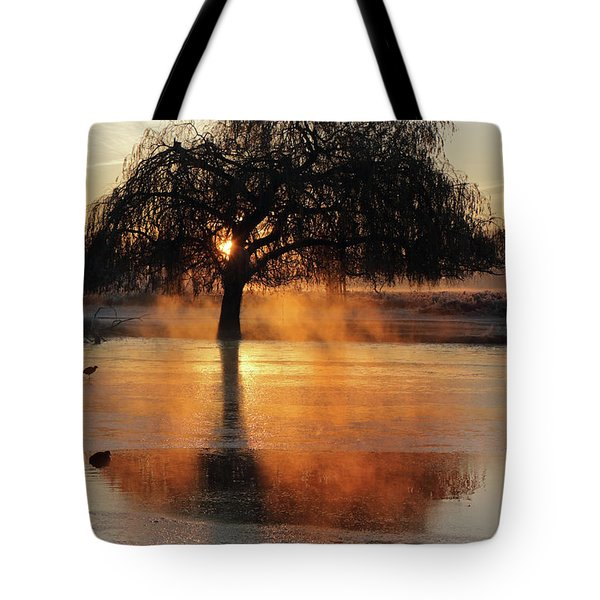 Frosty Sunrise In Bushy Park London 2 Tote Bag