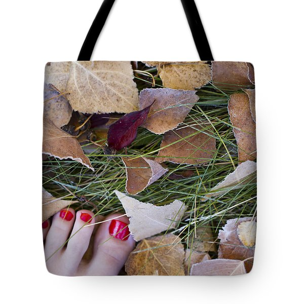 Frosty Toes Tote Bag