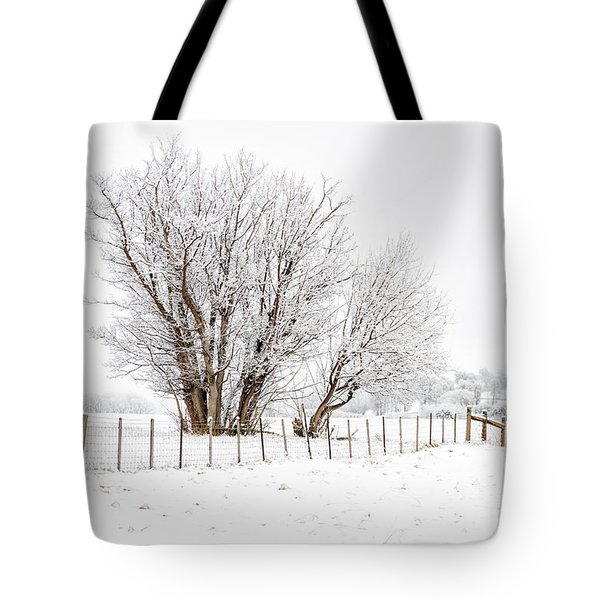Frosty Winter Scene Tote Bag