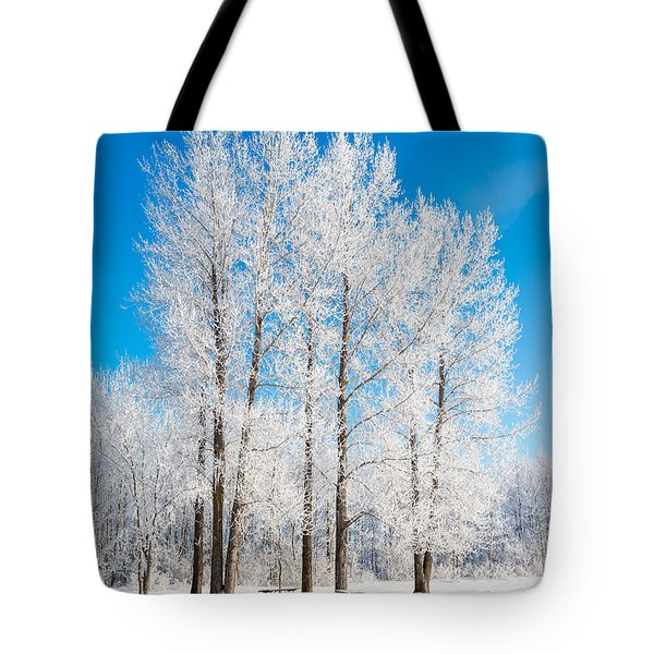 Frosty Wonderland Tote Bag