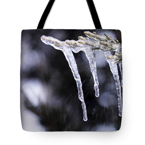 Frozen 3 Tote Bag