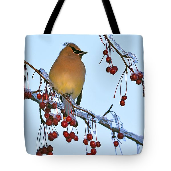 Tote Bag featuring the photograph Frozen Dinner  by Tony Beck