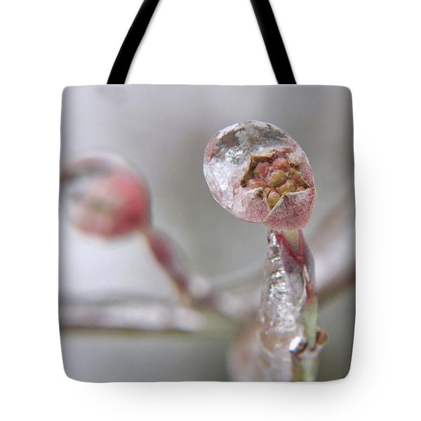 Frozen Dogwood Bud Tote Bag