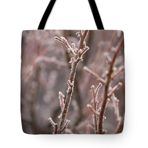 Tote Bag featuring the photograph Frozen Garden by Ana V Ramirez