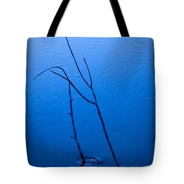 Tote Bag featuring the photograph Frozen In Blue by Monte Stevens
