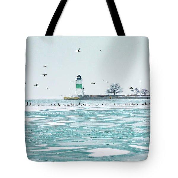 Frozen In Chicago Tote Bag
