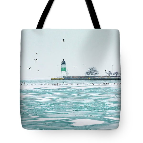 Frozen In Chicago Tote Bag