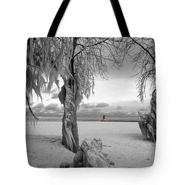 Tote Bag featuring the photograph Frozen Landscape Of The Menominee North Pier Lighthouse by Mark J Seefeldt