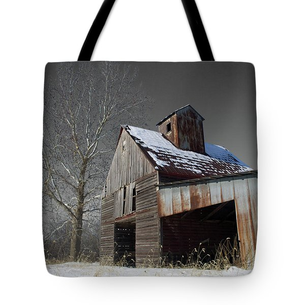 Tote Bag featuring the photograph Frozen Letcher by Dylan Punke