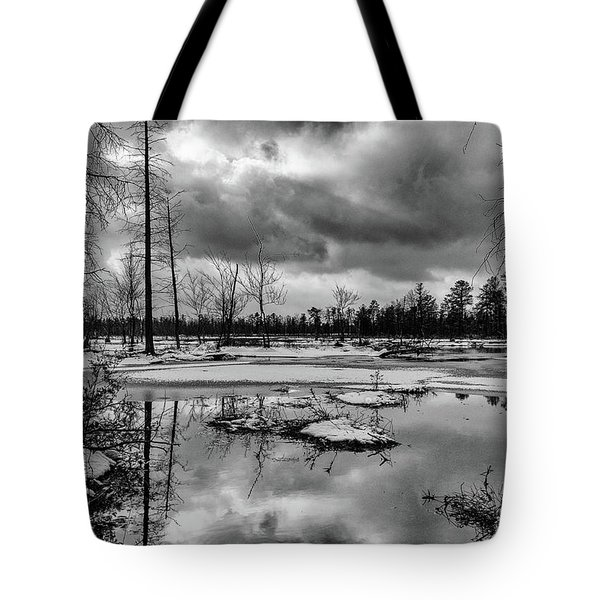 Tote Bag featuring the photograph Frozen Mullica River by Louis Dallara