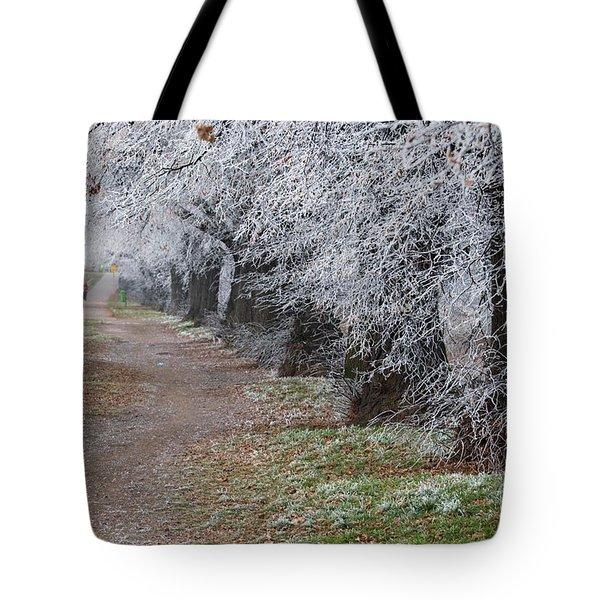 Frozen Pathway Tote Bag