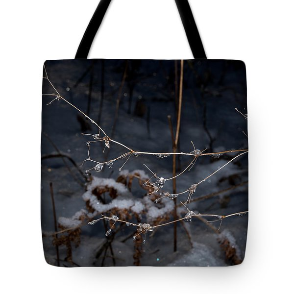 Frozen Rain Tote Bag by Annette Berglund