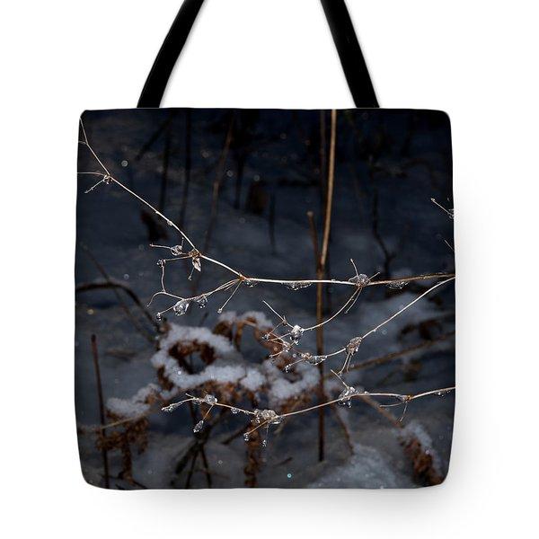 Frozen Rain Tote Bag