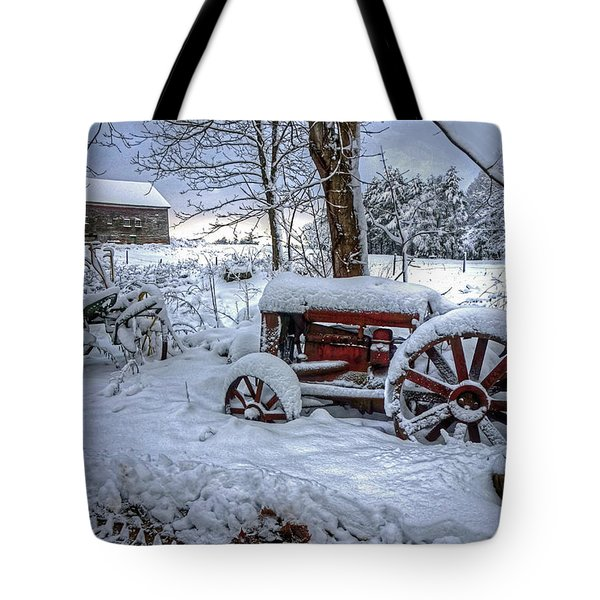 Tote Bag featuring the photograph Frozen Relics by Wayne Marshall Chase