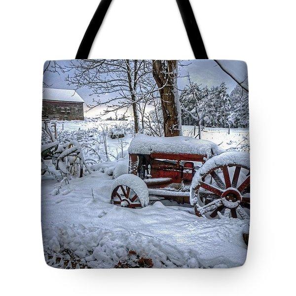 Frozen Relics Tote Bag
