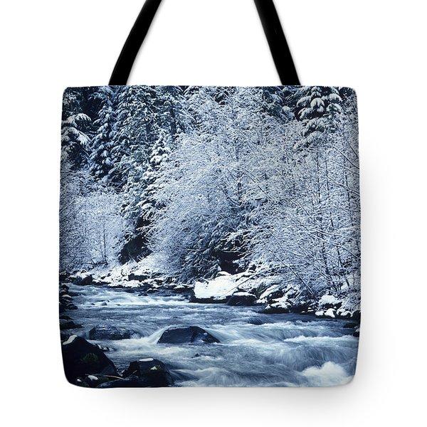 Frozen Salt Creek Tote Bag by Greg Vaughn - Printscapes