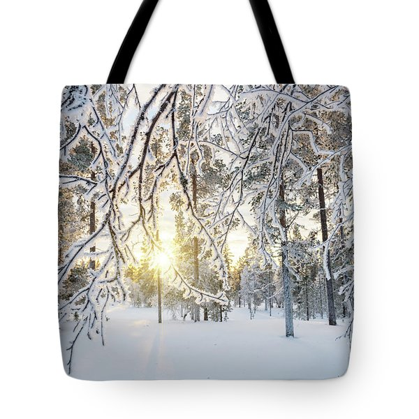 Tote Bag featuring the photograph Frozen Trees by Delphimages Photo Creations